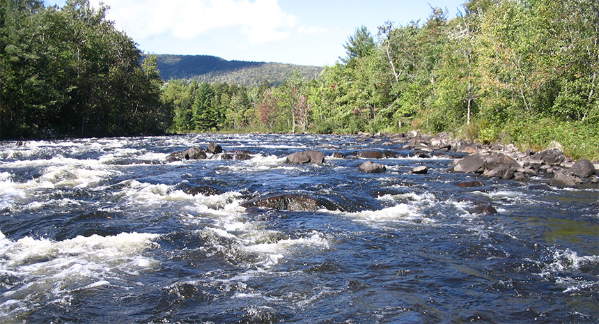 New England Rivers Fish Assemblage Study Completed!