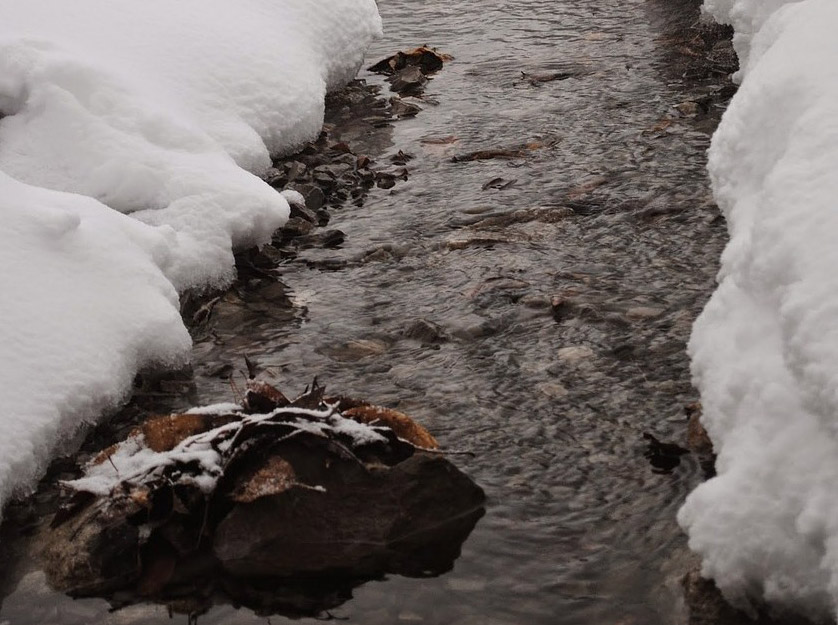 Streams in Winter