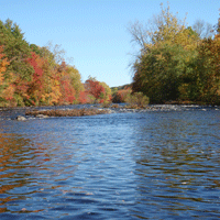 Maine Rivers Fish Assemblage Assessment:  Index of Biotic Integrity for Non-wadeable Rivers. (Addendum December 31, 2015).