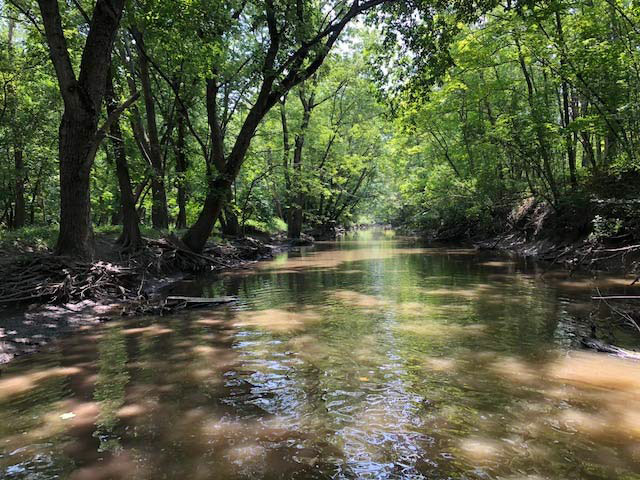 Biological and Water Quality Assessment of the North Branch Chicago River